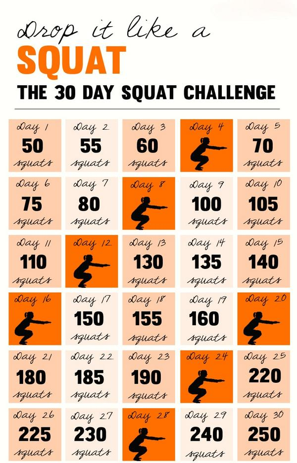 30 day ab and squat challenge review