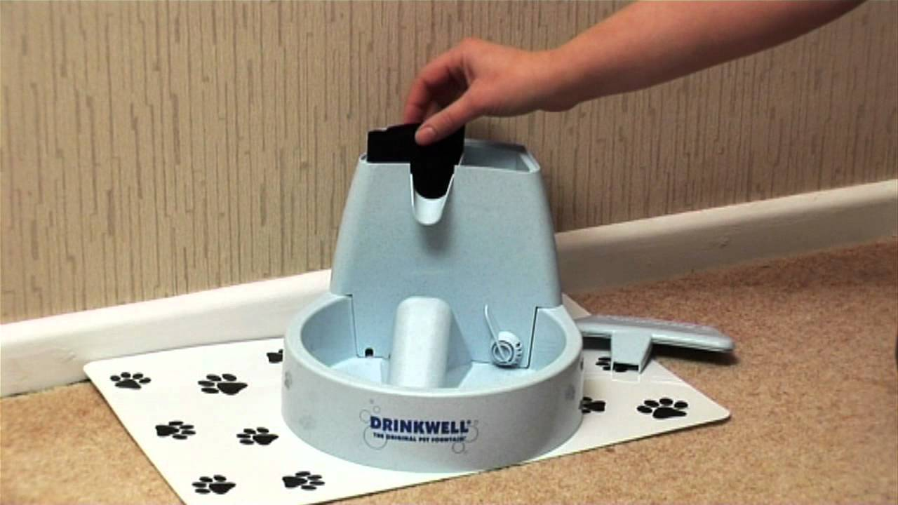 drinkwell original pet fountain reviews